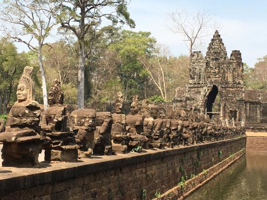 angkor wat tour guide or not