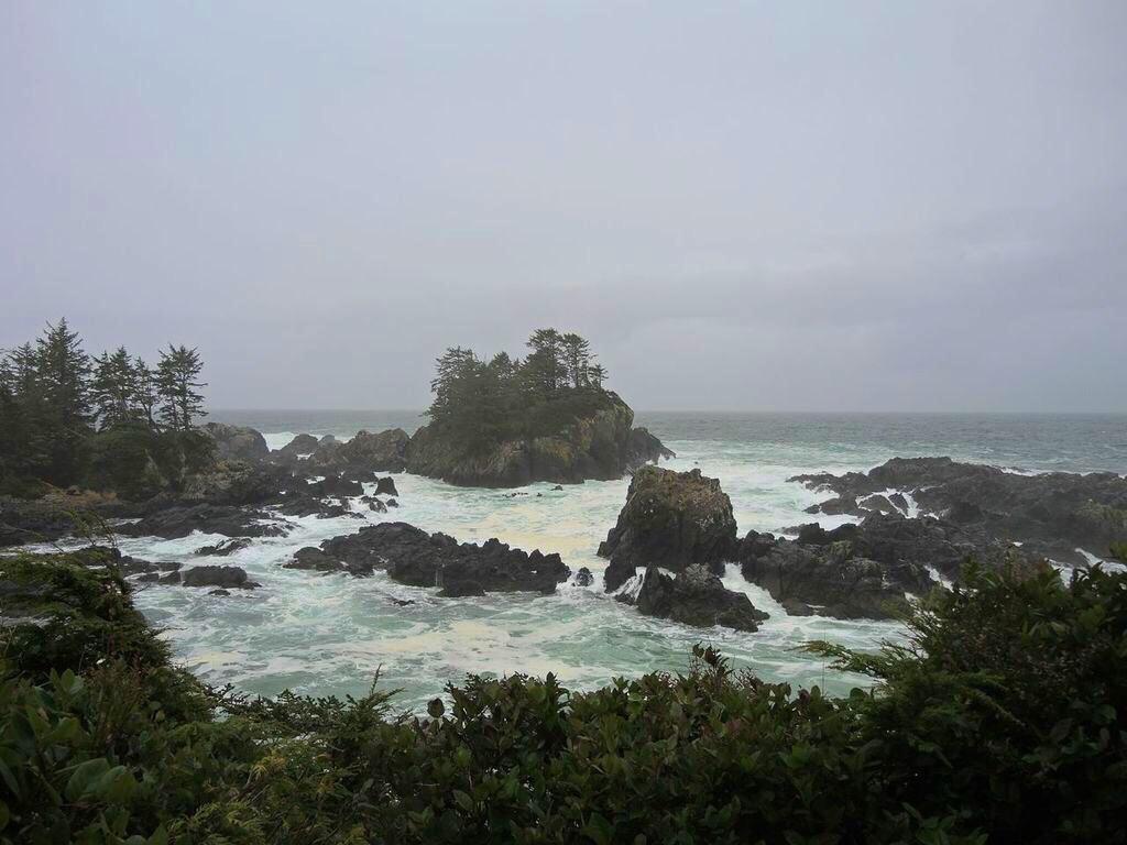 pacific rim national park guide